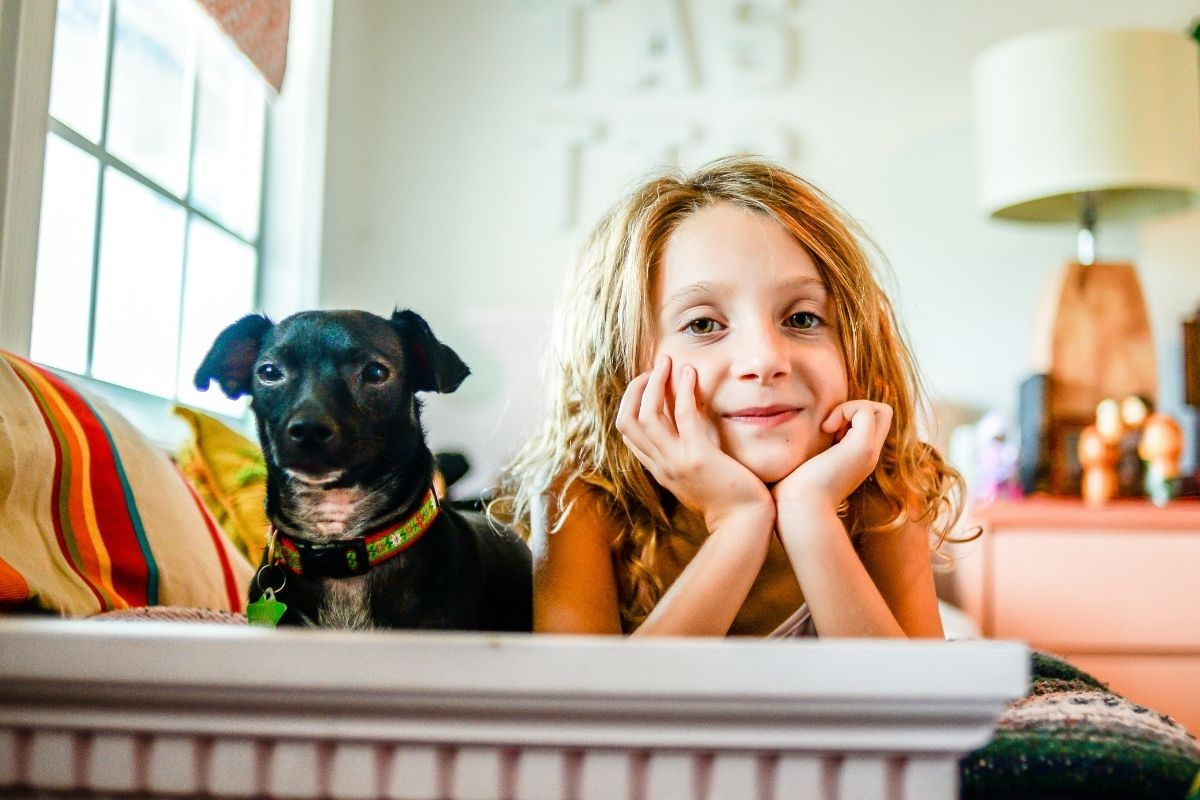 Selling your home when you have pets by SAGA 3