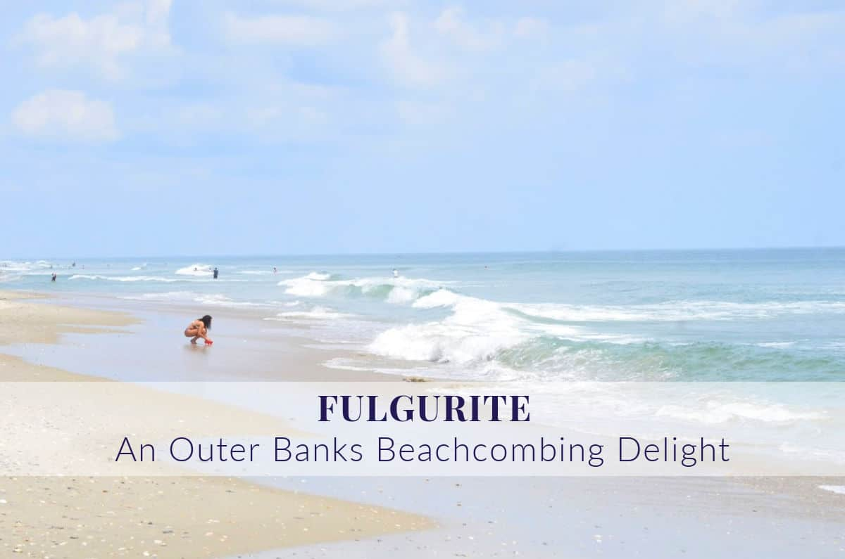 Beachcombing On The Outer Banks May Bring A Surprising Find Saga Realty Construction